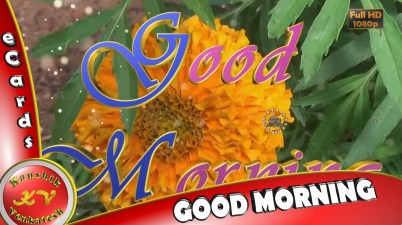 "Greetings to Wish every Morning a very ""Good Morning""."